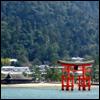 gramarye1971: floating torii at Itsukushima Shrine in Japan (Miyajima)