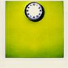 whut: (Misc - green pola.roid) (Default)