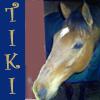 meezergal: (My beautiful Tiki by renoir_girl)