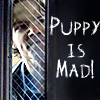 hells_half_acre: (Puppy Is Mad)