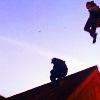 lasthalfmile: (rooftops)