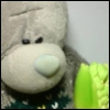 0xymoron: (Медвед и зеленая хня)