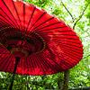 demiurgic: ([misc] red umbrella)
