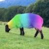 cephalopinguin: (rainbow_sheep)