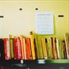 lit_nerd: Multicolored books sitting on a shelf. (Bookshelf)
