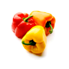 sofiaviolet: bell peppers: the only vegetable I will eat! (cooking, bell peppers)