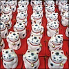 "sofiaviolet: a large number of small ""lucky cat"" statues (maneki neko)"