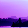 sofiaviolet: landscape with trees and mountains, in shades of purple (purple mountains)
