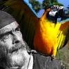 bringmethatnpc: (parrot)