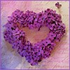 doro: heartshaped wreath purple flowers (annwyn55 VDay12)