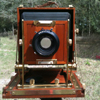 madshutterbug: (c) 2011 by Myself: Zone VI 8x10 view camera (View Camera)