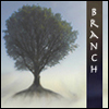 branchandroot: oak against sky (Default)