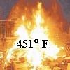 ravan: (451F)