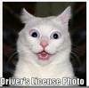 jeanmarieward: (DriversLicense)