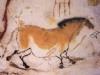 pjthompson: lascaux (art)