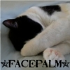 sara: a picture of a cat with his paw over his face and the caption *facepalm* (facepalm)