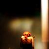 banquo: sᴘᴀʀᴛᴀᴄᴜs. (ᴘᴏᴍᴇɢʀᴀɴᴀᴛᴇs ᴏᴜᴛ ᴏꜰ sᴇᴀsᴏɴ.)