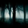 thefogmutters: (Fog)