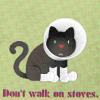 laceymcbain: (Cat with Cone Collar)