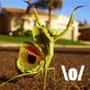 shirozora: Mod icon. (Grasshopper - \o/)