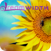 princessofgeeks: cropped closeup of yellow sunflower with dreamwidth logo (DWsunflower by tori)