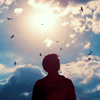 prophetize: (❝ carry on my wayward son ❞)