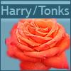 fics_by_flower: (harry/tonks)
