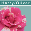 fics_by_flower: (harry/oliver)