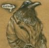 autopoiesis: hardboiled raven by nick gucker (Default)