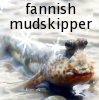 elke_tanzer: fannish mudskipper (fannish mudskipper)