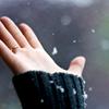 radostia: (le mão)
