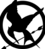 benziebox: Mockingjay (Hunger Games)