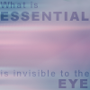 kerravonsen: What is essential is invisible to the eye (essential-invisible)