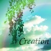 kerravonsen: Branch with leaves, a blue sky, clouds and a hint of a rainbow: Creation (Creation)