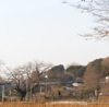 eldabe: Picture of a small part of the Japanese skyline. (Japan)