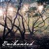 crystallinedrop: Fantasy  //  Enchanted (Default)