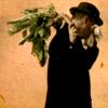 mysilenceknot: (horseradish)