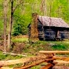 groovy: (cabin)