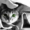 kerravonsen: cat peering out of blanket (cat)