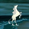 technosage: (misc_cartoon rearing horse)