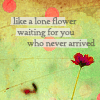 libidinous: (flower)