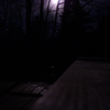 psghayleaux: moon lit night. (full moon)