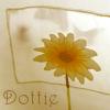 catsmeow: (Dottie behind the curtain)