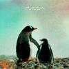 x2xbandgeekx2x: (penguins!)