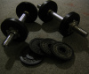nyecamden: (free weights)