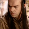 hillarygayle: (Elrond Serious)