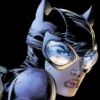 gotthecanary: (catwoman - working mode)