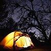 caviar_and_meths: (camp of stars)