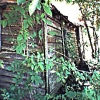sharpest_asp: Old house in the woods (Scenic: Old House)
