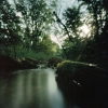 sharpest_asp: Wooded Stream (Scenic: Mississippi Stream)